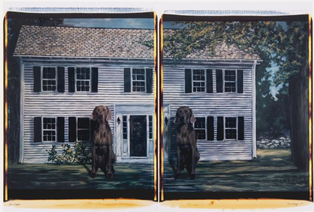 two panel photograph with a white house in the background and two Weimaraner dogs sitting in the foreground