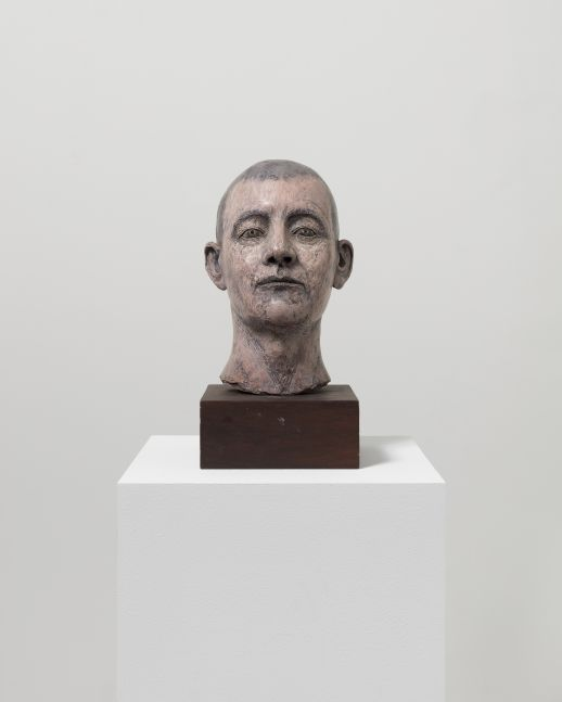 Detail photographic featuring a sculpture of man's head with light-skin tone and green eyes