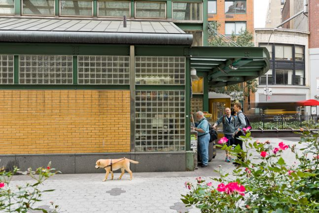 Outdoor installation view of a hyper-realistic golden retriever walking outside of the West 72nd St. and Broadway subway station