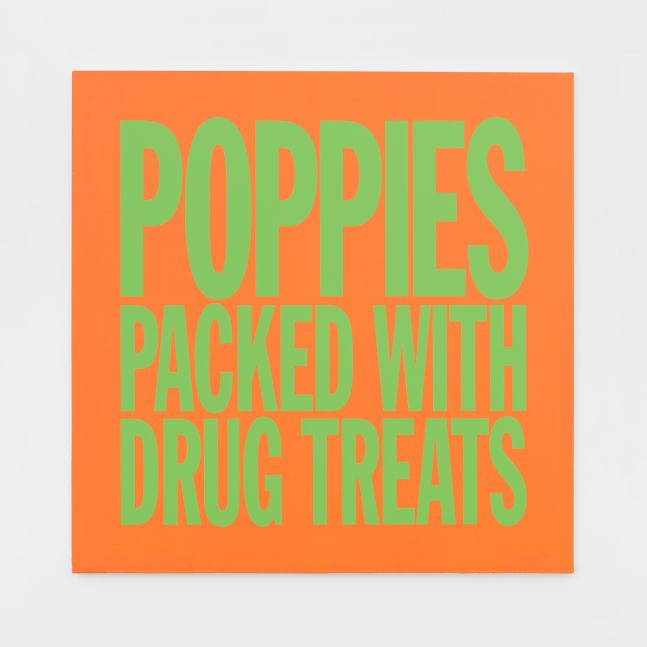 John Giorno, POPPIES PACKED WITH DRUG TREATS, 2017