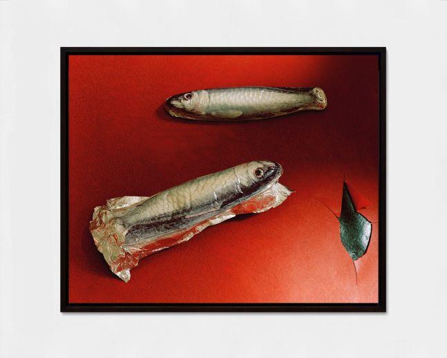 LUCAS BLALOCK  Sardines 2016 Archival inkjet print, framed  Ed. 2/3 + 2 AP Image 28.5 x 37 x 2 cm / 11 1/8 x 14 5/8 x 3/4 in  BLALO46504