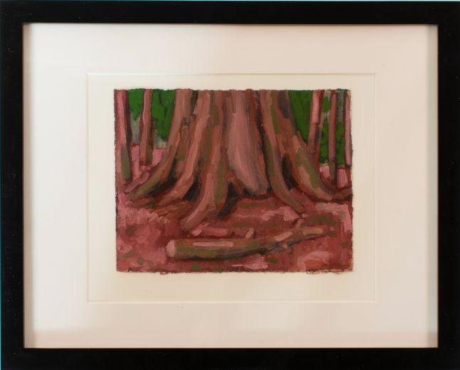 "Sequoia Study #3  6"" x 8""  Oil On Paper"
