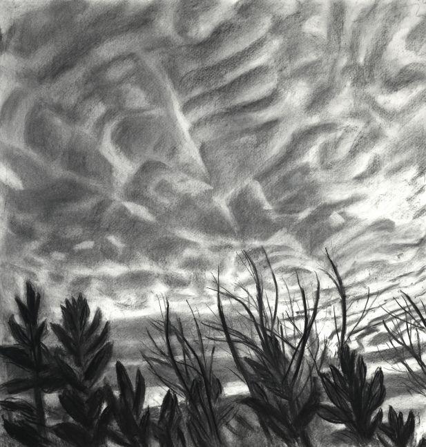 "Mackerel Sky I  44"" x 42""  Charcoal On Paper"