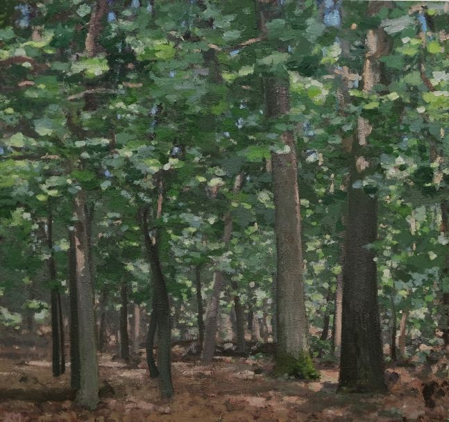"""Forest In The Valley  60"""" x 64""""  Oil On Canvas"""
