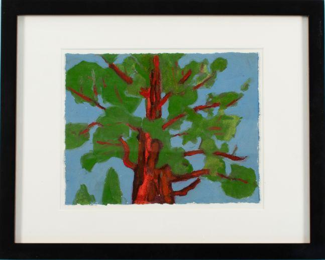 "Sequoia Study #1  6"" x 8""  Oil On Paper"