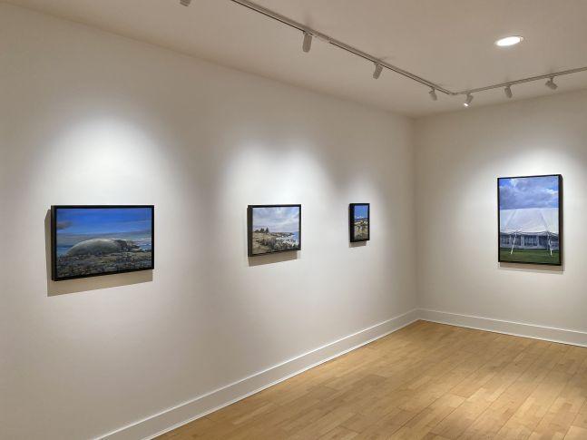 Douglas Martenson: Outside Looking In, Installation Shot