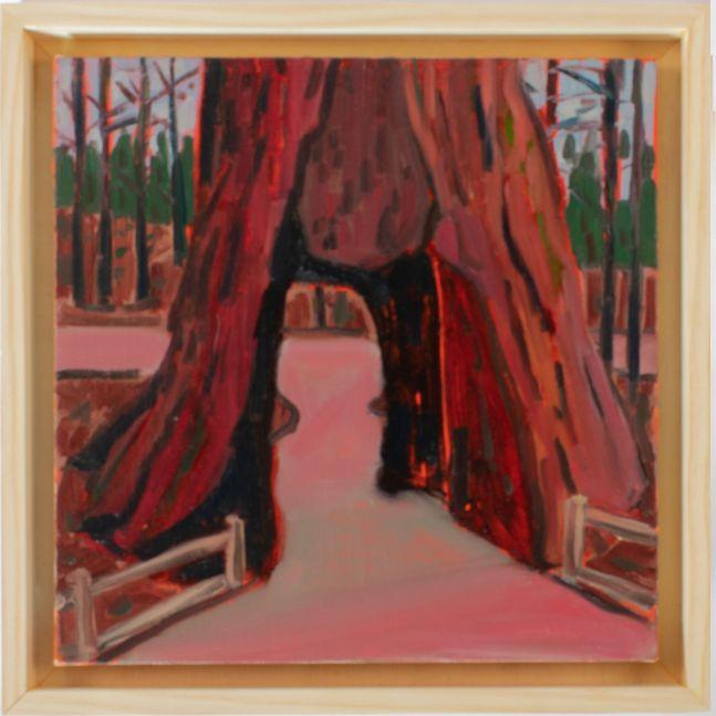 "California Tree  12' x 12""  Oil On Canvas"