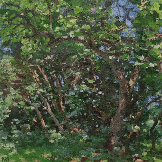 """The Apple Tree, July 48"""" x 48  Oil On Canvas"""
