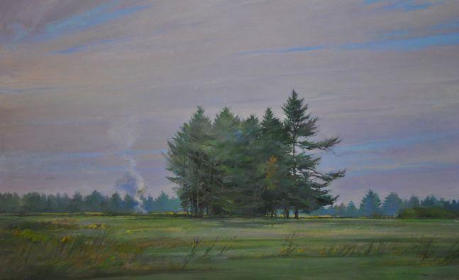 """Pines In A Field  32"""" x 52""""  Oil On Linen"""