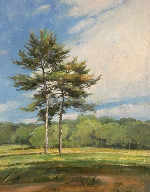 """Pines In A Field II  15"""" x 11""""  Oil On Board"""