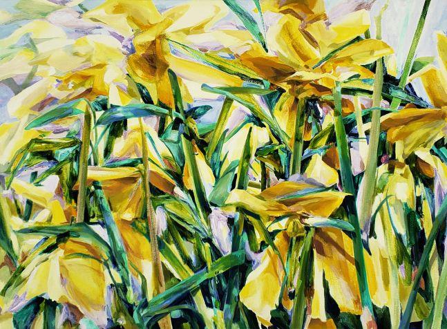"""Naomi Chung, Yellow Daffodil, 42"""" x 55"""", Oil On Canvas"""