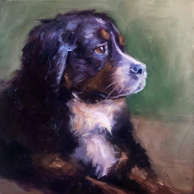 "Christina Leone, Brodie 12"" x 12""  Oil On Canvas"