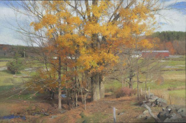 "Big Oak, October  24"" x 36.5""  Oil On Canvas"