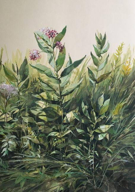 "Wild Flowers  22"" x 15"" Watercolor On Buff"