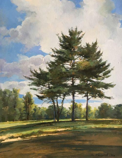 "Douglas Martenson, Pines  15"" x 11.25""  Oil On Panel"
