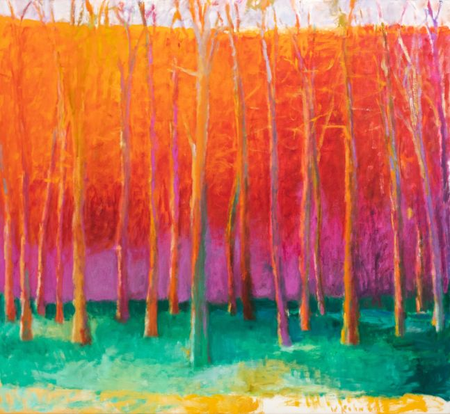 Wolf Kahn, In a Red Space, Oil on linen, 52 x 60 inches, Wolf Kahn Oil Paintings, Wolf Kahn Original Paintings For Sale, Wolf Kahn Trees