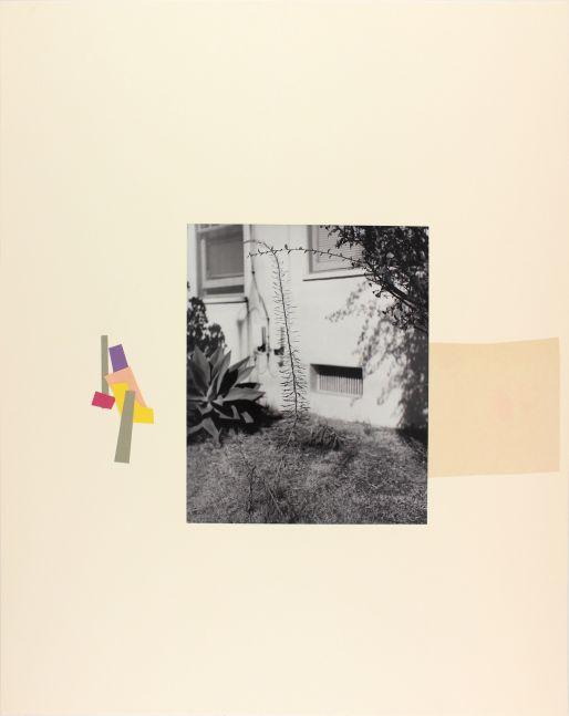 John Gossage Untitled (Distraction) 1996