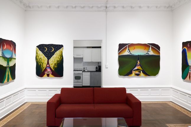 Eliot Greenwald: Takin' the Riverboat Out on Snake Lake - installation view
