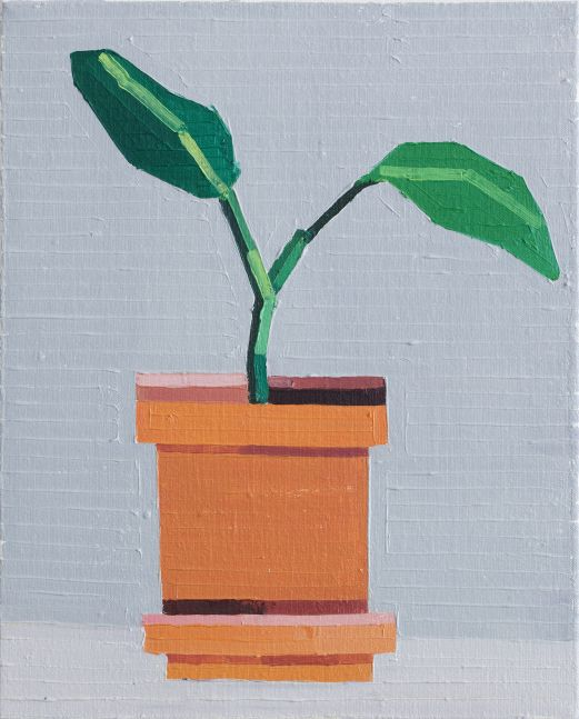 Guy Yanai Plant with Two Leaves 2016