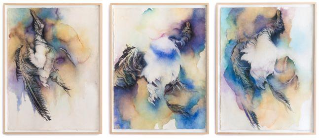 Noel Grunwaldt, Untitled (Seagull), 2009-10