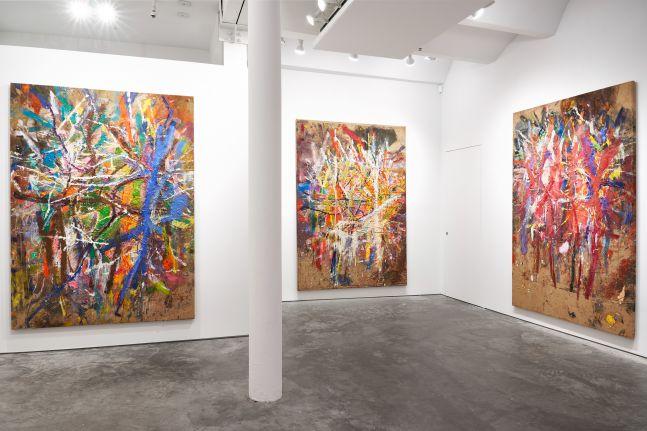 Spencer Lewis: Six Jutes (1) installation view