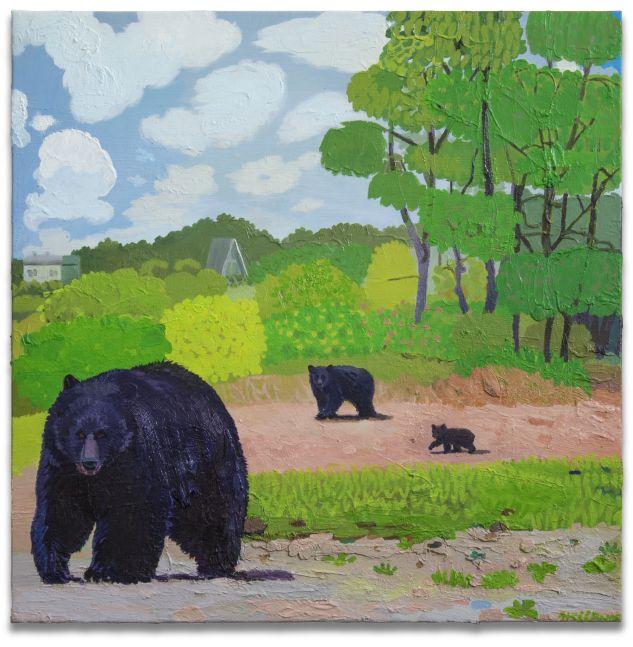 Daniel Heidkamp Hampton Bears 2017