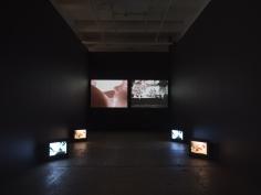 Carolee Schneemann, Further Evidence - Exhibit B
