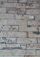 Julian Charrière