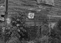 MARK STEINMETZ | NASHER MUSEUM OF ART AT DUKE UNIVERSITY