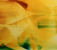 Byran Graf upcoming exhibitions