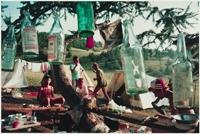 Bertien van Manen book and gallery exhibition this Fall