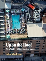 Up on the Roof: New York's Hidden Skyline