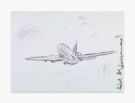 Adel Abdessemed Plane, 2015