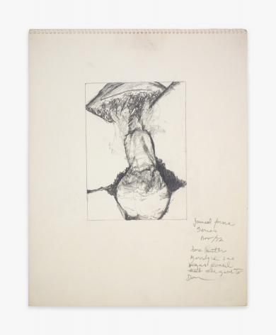 Betty Tompkins Fuck Drawing November 1972