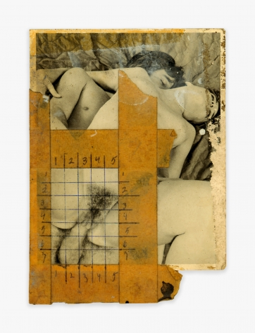 Betty Tompkins Collage #7,