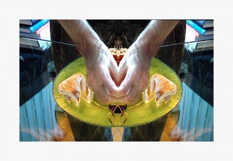 Lucas Samaras Fowl III iMovie No. 463