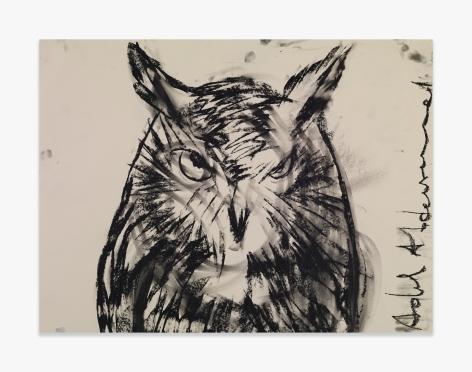 Adel Abdessemed Owl, 2015