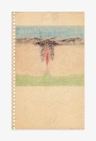 Betty Tompkins Cunt Landscape