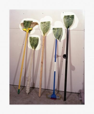 Lucas Blalock Plants
