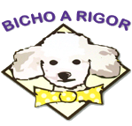 Pet Shop Bicho a Rigor