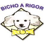Pet Shop Bicho a Rigor