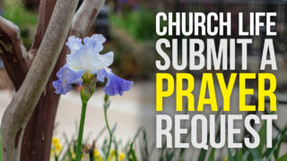Church Life Announcement Prayer