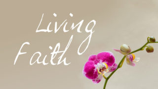 Promo womens bible study living faith