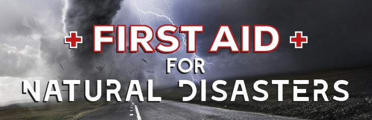 080cfd69f57 First Aid and Health Safety for Disasters