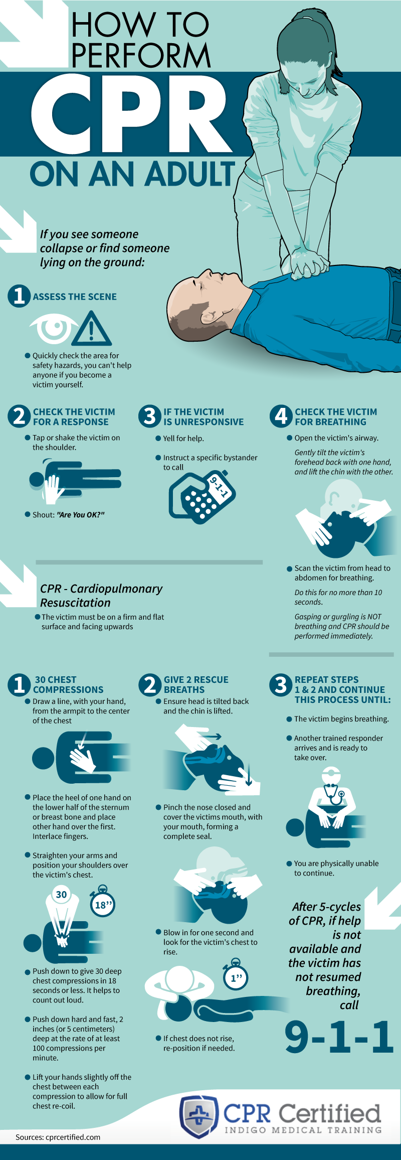 How to Perform Adult CPR - CPRCertified.com - Infographic