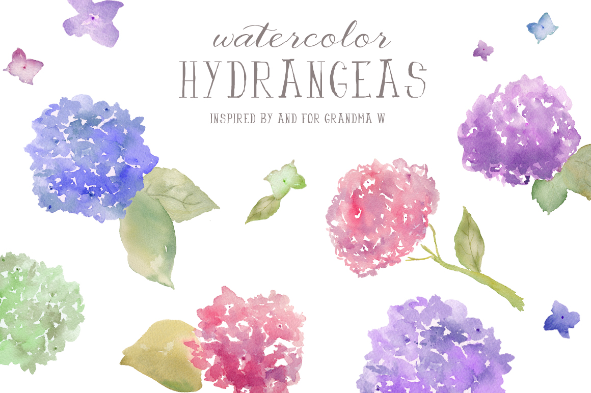 Watercolor Clip Art- Hydrangeas ~ Illustrations on ...