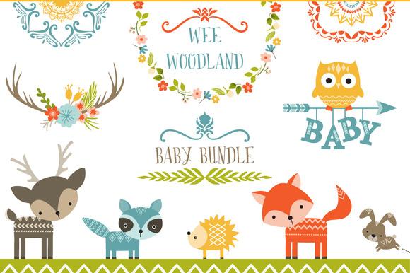 Wee Woodland Baby Bundle Illustrations On Creative Market