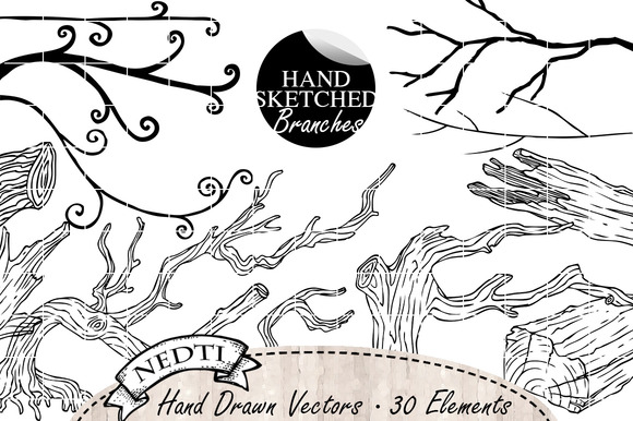 Tree Branches Driftwood Hand Drawn