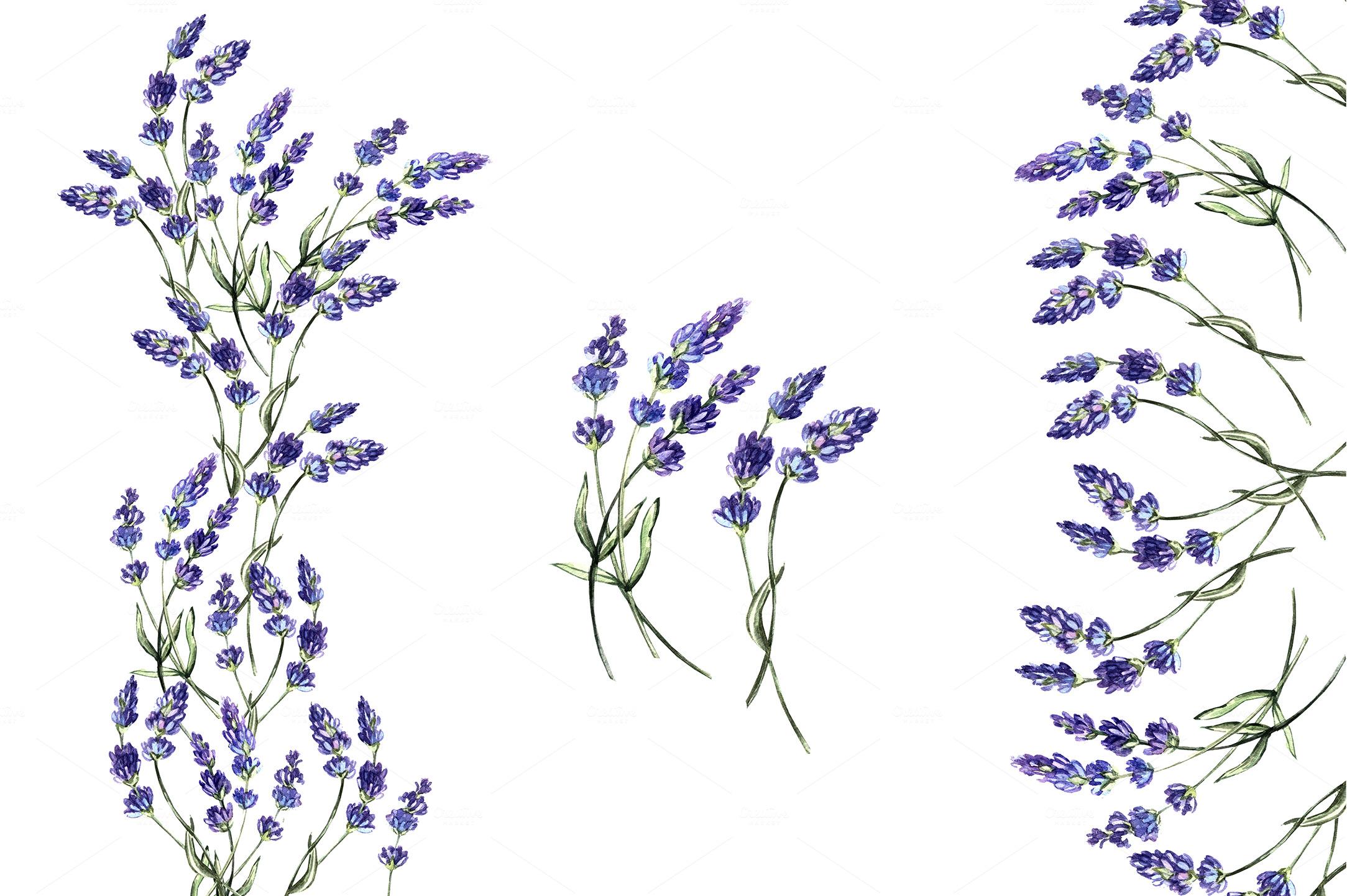 Set With Lavender Flowers Illustrations On Creative Market