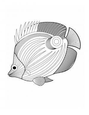 Illustration #877